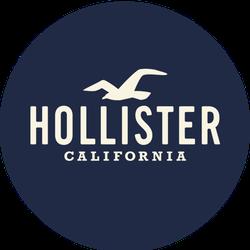 Hollister Badge