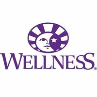 Wellness Logo