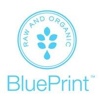 BluePrint Cleanse Logo