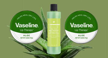 The Best Products With Aloe Vera