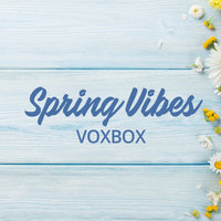 Big VoxBox News: This Box is the First of Its Kind