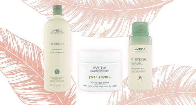 5 Must-Try Aveda Products