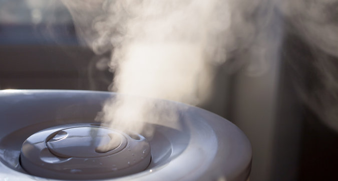 Top Rated Humidifiers