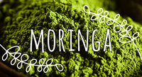 Ingredient Breakdown: Moringa