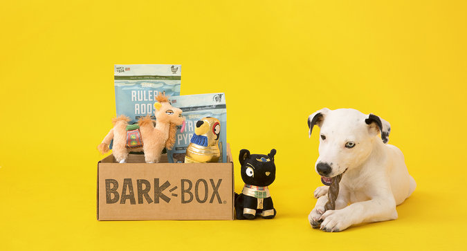 Celebrate National Dog Day with Influenster and BarkBox