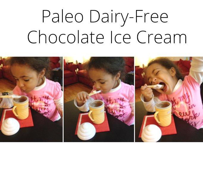 Fast Paleo Dairy-Free Chocolate Ice Cream