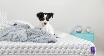 Meet Layla, The Copper Infused Mattress