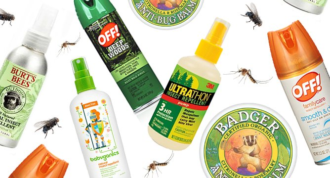Buzz Off, Bugs! Top Insect Repellents