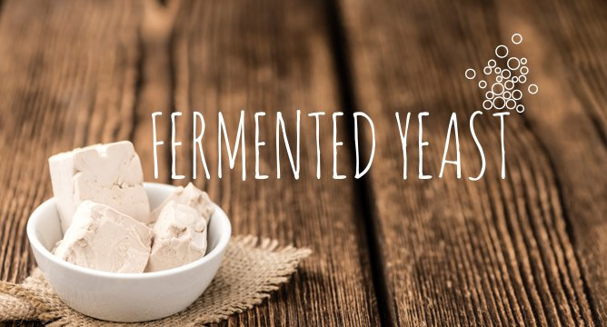 Ingredient Breakdown: Fermented Yeast