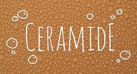 Ingredient Breakdown: Ceramides