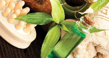Tea Tree Oil Products You Have to Try