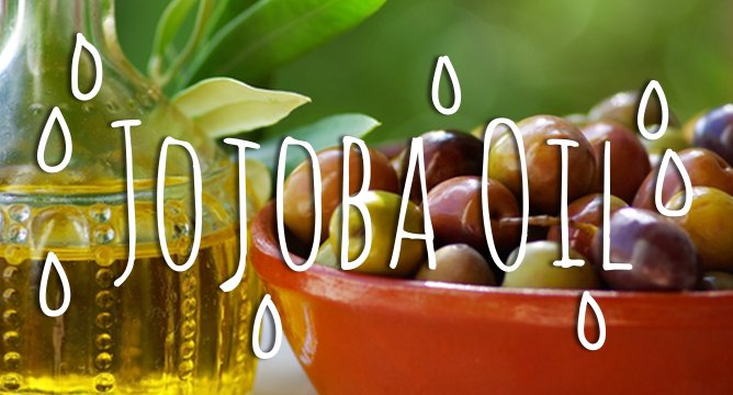 Ingredient Breakdown: Jojoba Oil