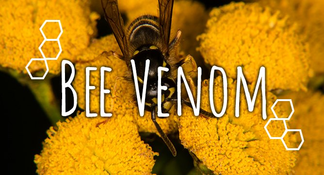 So, Bee Venom in Skincare is a Thing