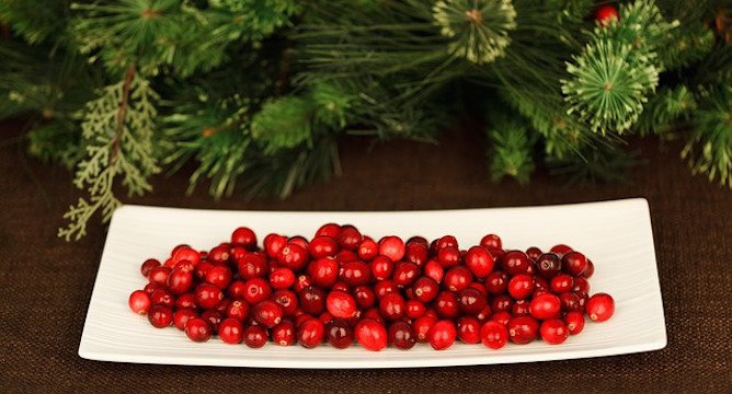 5 Cranberry Recipes to Try This Holiday Season!