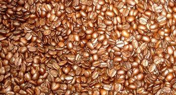 Brand Spotlight: Kauai Coffee
