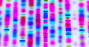 3 DNA Testing Services for National DNA Day