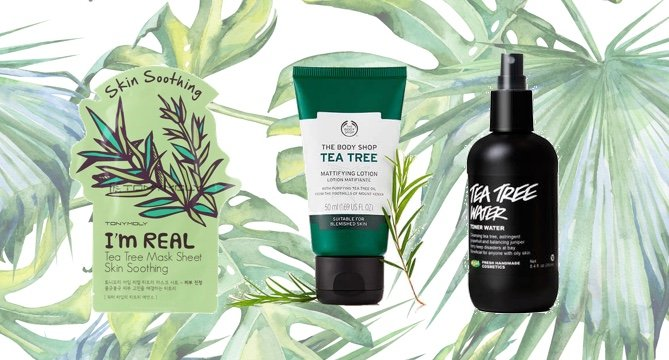 The Best Tea Tree Oil Products to Treat Acne