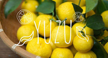 You Should Probably Be Adding Yuzu To Your Skincare Routine