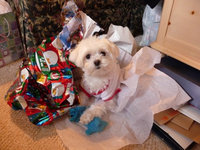 Pet Shoppe   Pet Waste Disposal Bags & Dispenser Set uploaded by Melanie F.