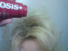 Photo of Osis+ Dust It Mattifying Powder uploaded by Deanna T.
