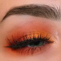 Wet n Wild Fergie Eye Shadow Palette uploaded by Courtlin G.