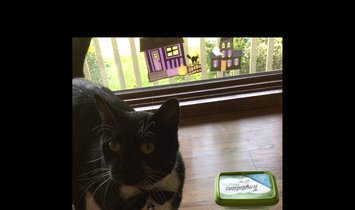 Photo of WHISKAS TEMPTATIONS Mix Ups Chicken, Catnip and Cheddar Cat Treat uploaded by Michelle S.