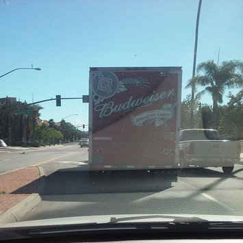 Budweiser Beer uploaded by Rebecca R.