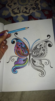 Colorama Coloring Book: Flowers, Paisleys, Stained Glass and More uploaded by Nikkita M.