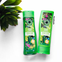 Herbal Essences Drama Clean Shampoo uploaded by Dora W.