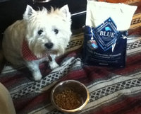 THE BLUE BUFFALO CO. BLUE™ Life Protection Formula® Chicken and Brown Rice Recipe For Senior Dogs uploaded by Penny S.