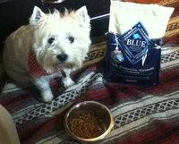 Blue Buffalo BLUETM Life Protection Formula Senior Dog Food uploaded by Penny S.