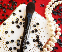Wayne Goss The Air-Brush uploaded by sravanthi c.