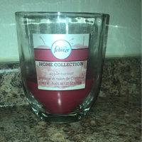 Febreze Home Collection Candle, Apple Currant, 12 oz uploaded by Miranda F.
