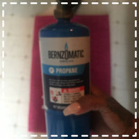 BernzOmatic msds Propane Gas Cylinder 14.1oz Disposable | HD Supply uploaded by Jenell J.