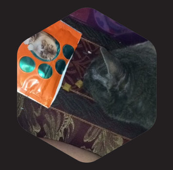 Photo of Iams™ Proactive Health™ Hairball Chicken Flavor Daily Treats Cat Food uploaded by Hope W.