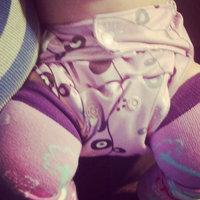 GroVia Cloth Diaper Shell - Hook & Loop - Adventure uploaded by Amanda T.