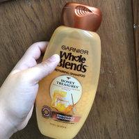 Garnier Whole Blends  Honey Treasures Repairing Shampoo uploaded by Evelyn H.