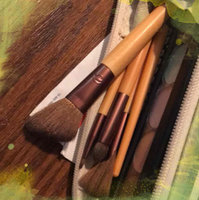 EcoTools 6 Piece Day To Night Clutch Set uploaded by Lisa M.
