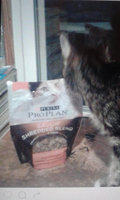 Purina® Pro Plan® Savor® Shredded Blend Adult Chicken & Rice Formula Cat Food 14 lb. Bag uploaded by Marylou L.