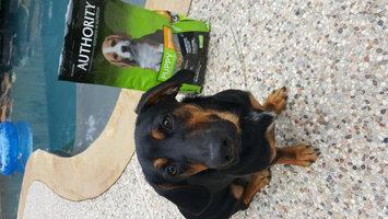 Photo of AuthorityA Puppy Food uploaded by krystal D.