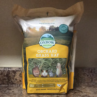Oxbow Pet Products Oxbow Orchard Grass Hay (15-oz bag) uploaded by Miranda F.