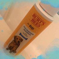 Burt's Bees Dog Itch Soothing Shampoo uploaded by Angela B.