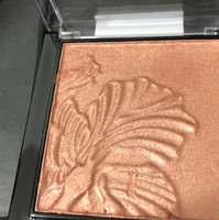 Wet n Wild Color Icon Ombre Blusher uploaded by Kimberly C.