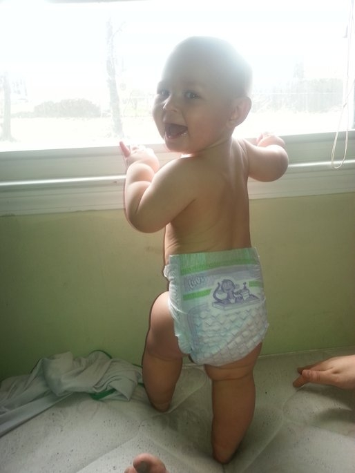 Luvs Diapers uploaded by Casey R.