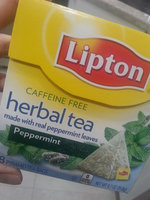 Lipton® Herbal Tea Bags Peppermint uploaded by Kimberly F.