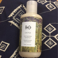 R+Co Cactus Texturizing Shampoo uploaded by Darah H.