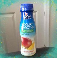 LALA® Mango Yogurt Smoothie uploaded by Lauren G.