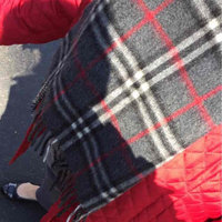 Burberry Giant Check Cashmere Scarf uploaded by Dana C.