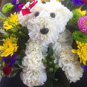 1-800-Flowers uploaded by Lauren C.