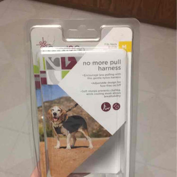 Photo of Good2Go Black No Pull Dog Harness, Medium uploaded by Claire M.